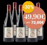 Apulien Paket – Rot – 4.5 L – L'Essenza di Puglia bei VINZERY