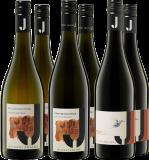Julius  Burgunder Paket Weingut Julius – Rheinhessen – bei WirWinzer