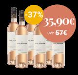 Cuvée Rosé im 6er Paket, Villa Heynburg, Baden – 4.5 L – _ bei VINZERY