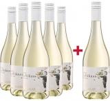 Weishaar  5+1 Paket Secco Weiß Luftikuss Weingut Weishaar – Baden – bei WirWinzer