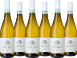 Lugana 'I classici' Weinpaket, Lombardei, Trocken bei Enzo