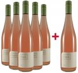 Franz 2020 5+1 Paket Rosé trocken Weingut Franz – Rheinhessen – bei WirWinzer