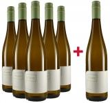 Franz 2020 5+1 Paket Silvaner trocken Weingut Franz – Rheinhessen – bei WirWinzer