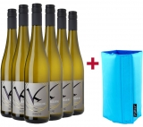 WirWinzer Select 2020 Riesling-Paket + Kühlmanschette WirWinzer Select – Pfalz – bei WirWinzer