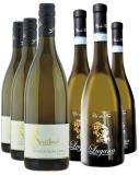 Weißwein Probierpaket| 3 x Grauburgunder + 3 x Lugana beim Lieblingsweinladen