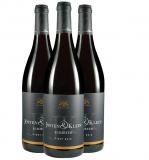 Josten & Klein 2017 Schiefer Pinot Noir – Paket Weingut Josten & Klein – Mittelrhein – bei WirWinzer