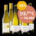 2020 Lago Venti Pinot Grigio / Weißwein / Venetien Delle Venezie DOC bei Hawesko