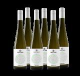 Sylvaner I Pinot Gris von Harth & Harth, 6er-Paket – 4.5 L – Weingut Harth GbR bei VINZERY