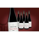 Dominio de Tares »Cepas Viejas« Mencía 2016  4.5L Weinpaket aus Spanien bei Wein & Vinos