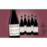 Ercavio Syrah 2017  4.5L Trocken Weinpaket aus Spanien bei Wein & Vinos