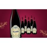 Palador Crianza 2018  4.5L Trocken Weinpaket aus Spanien bei Wein & Vinos