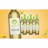 Toucas Vinho Verde 2020  7.5L Halbtrocken Weinpaket aus Spanien bei Wein & Vinos