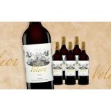 Volior 2018  4.5L Trocken Weinpaket aus Spanien bei Wein & Vinos