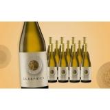 La Orphica Selección Aurora Blanco 2020  9L Trocken Weinpaket aus Spanien bei Wein & Vinos