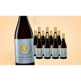 La Orphica Monastrell Selección Tardia 2020  9L Halbtrocken Weinpaket aus Spanien bei Wein & Vinos