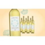 Intuición Verdejo 2020  7.5L Trocken Weinpaket aus Spanien bei Wein & Vinos