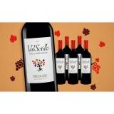 Val Sotillo »Finca Buenavista« 2017  4.5L Trocken Weinpaket aus Spanien bei Wein & Vinos
