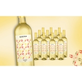 Quietus Rueda 2020  9L Trocken Weinpaket aus Spanien bei Wein & Vinos