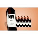 Pau Tinto 2020  11.25L Trocken Weinpaket aus Spanien bei Wein & Vinos