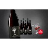 MESA/9.9  4.5L Trocken Weinpaket aus Spanien bei Wein & Vinos