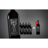 MESA/7.3  7.5L Trocken Weinpaket aus Spanien bei Wein & Vinos