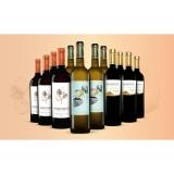 Mischpaket Monatswein November  9L Weinpaket aus Spanien bei Wein & Vinos