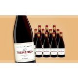 Enrique Mendoza »La Tremenda« Monastrell 2018  7.5L Trocken Weinpaket aus Spanien bei Wein & Vinos