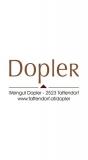 Dopler 2020 PET NAT trocken Weingut Dopler – Thermenregion (AT) – bei WirWinzer